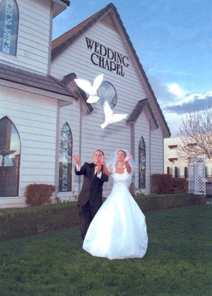 white dove release by wedding couple